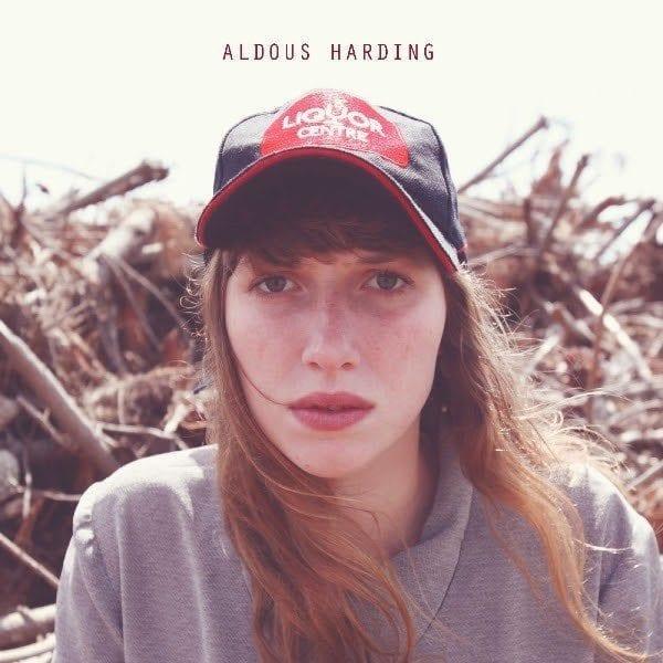 La douce brise folk de Aldous Harding